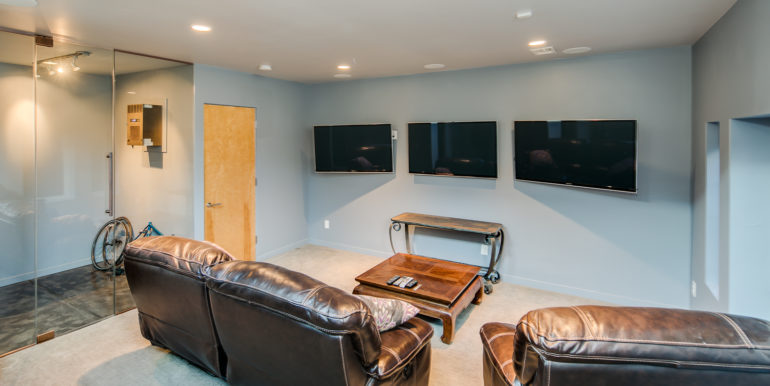 25_Lower Level-Family Room-1